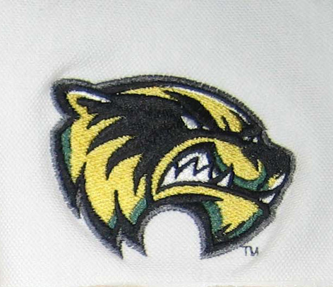 High Quality Embroidery Digitizing with a wild animal: leopard sewn on Tajima using Pulse PXF
